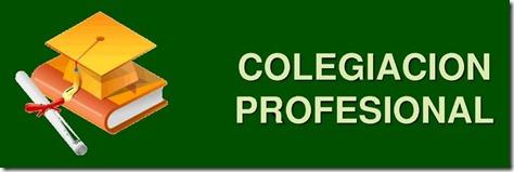 NECESARIA LA CERTIFICACIÓN Y COLEGIACIÓN DE ALGUNAS PROFESIONES, COMO LAS RELACIONADAS CON LA MEDICINA, INGENIERÍA, ABOGACÍA, ARQUITECTURA Y CONTADURÍA: ARELY GÓMEZ GONZÁLEZ